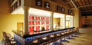 267-c-gastronomy-4-hotel-barcelo-punta-cana37-150950